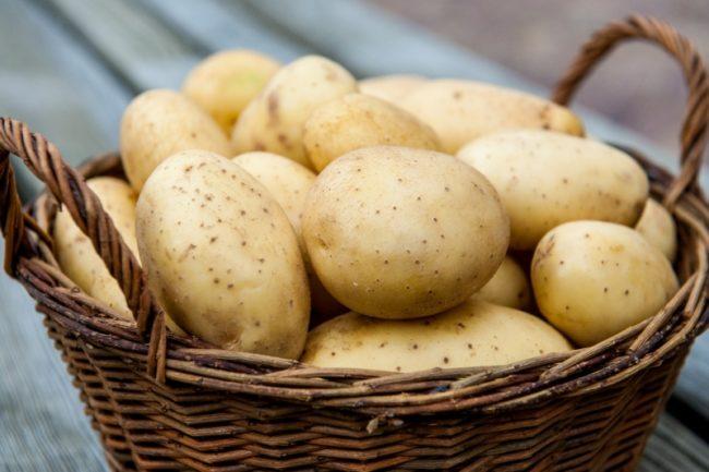 Свежий картофель в корзинке