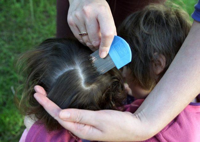 Осмотр ребёнка на вшей при помощи специального гребня